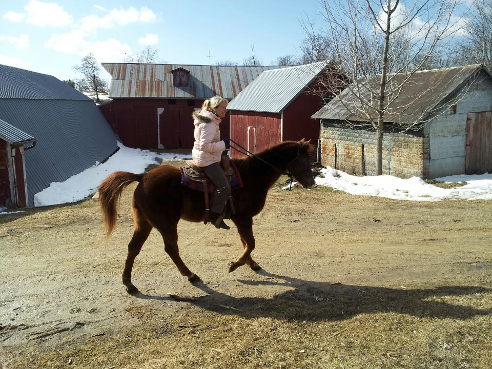 Riding an Old Horse